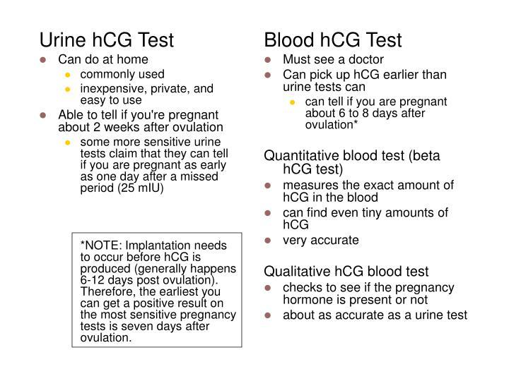 Urine hCG Test