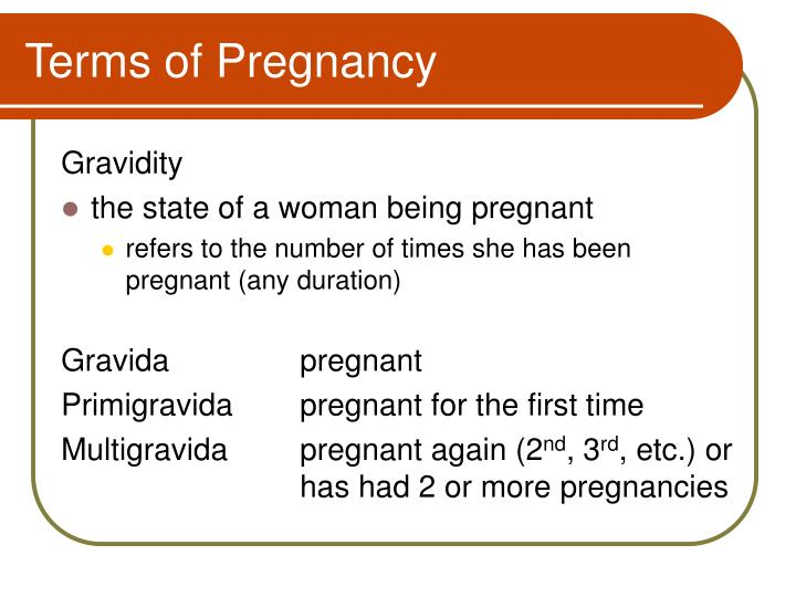 Terms of Pregnancy