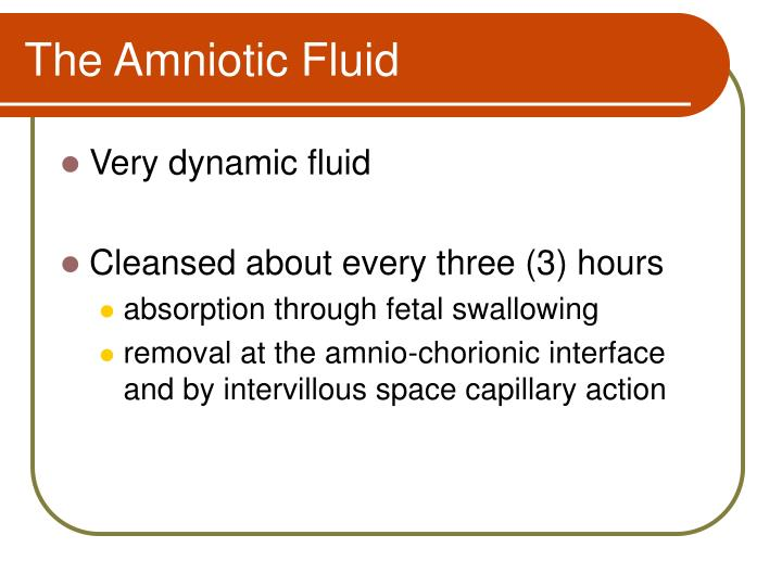 The Amniotic Fluid