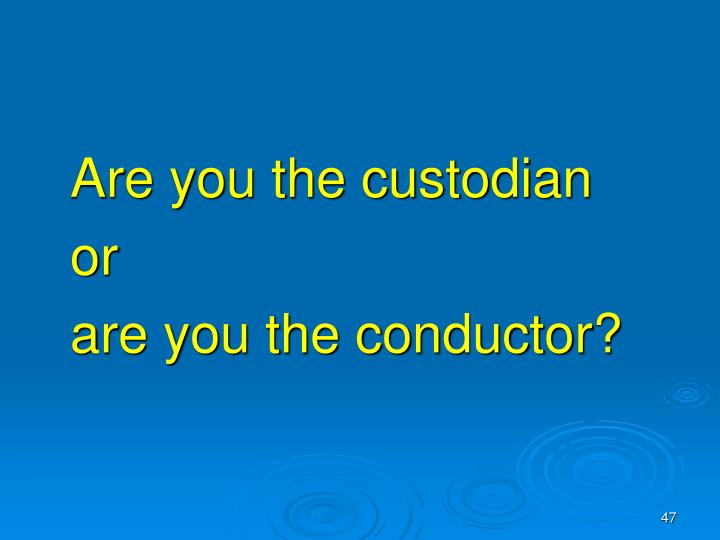 Are you the custodian