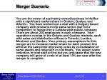 merger scenario