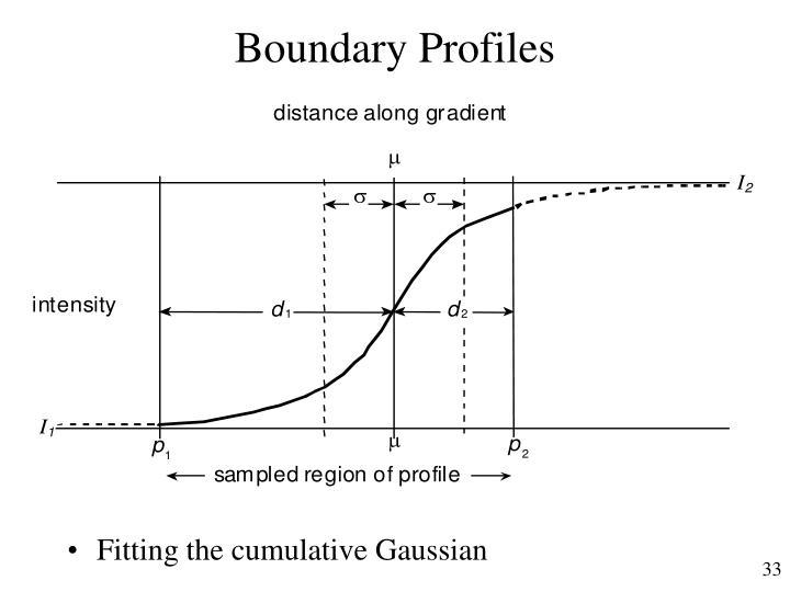 Boundary Profiles