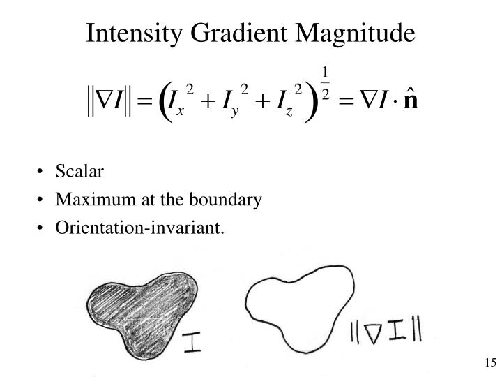 Intensity Gradient Magnitude