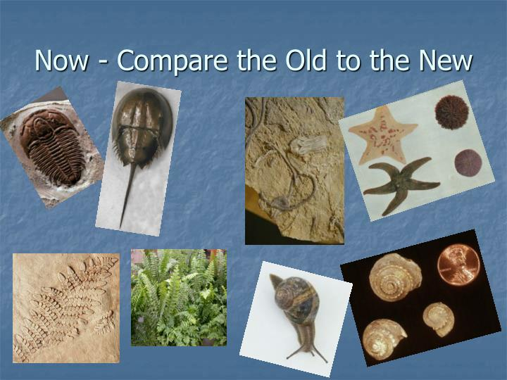 Now - Compare the Old to the New