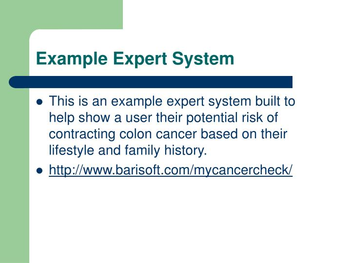 Example Expert System