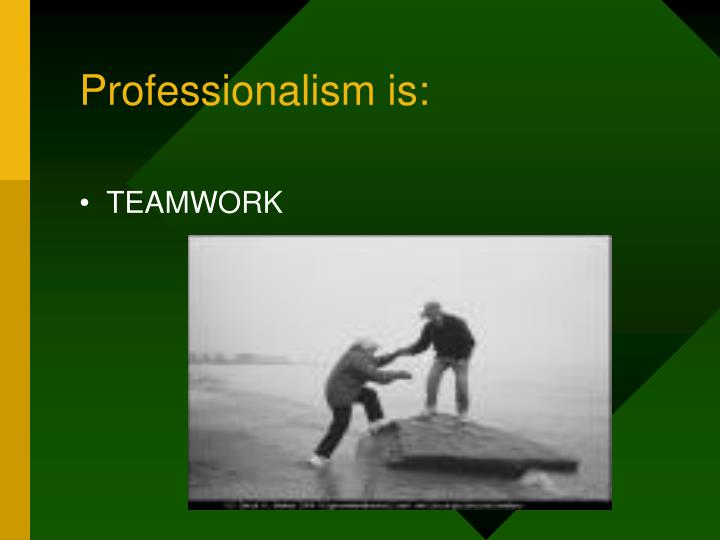 Professionalism is: