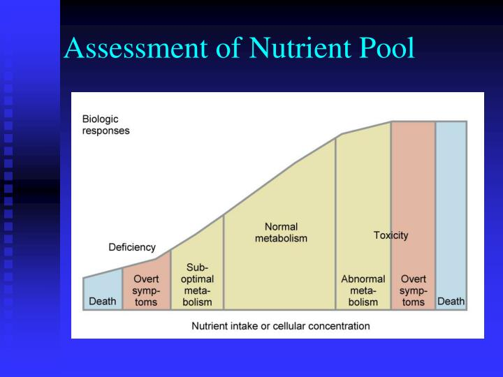 Assessment of Nutrient Pool