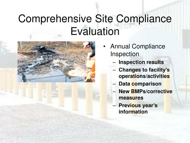 Comprehensive Site Compliance Evaluation
