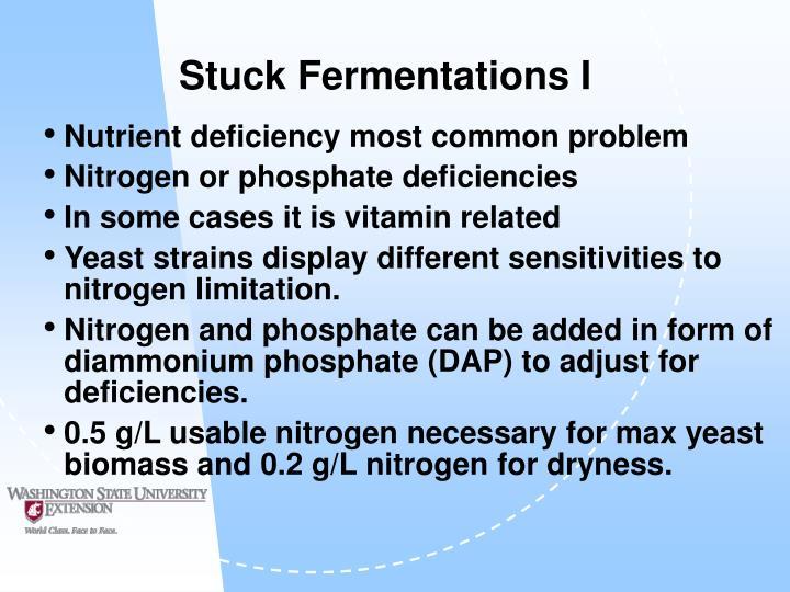 Stuck Fermentations I