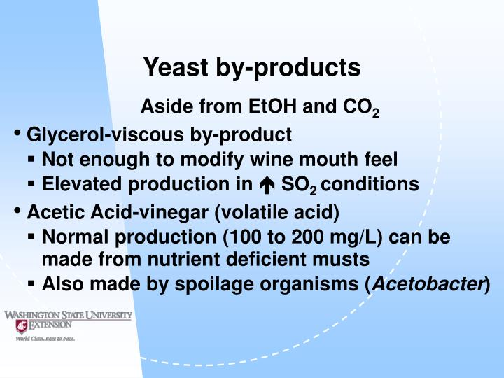 Yeast by-products