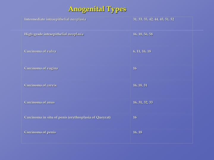 Intermediate intraepithelial neoplasia