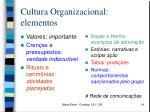 cultura organizacional elementos