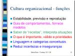 cultura organizacional fun es