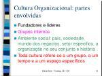 cultura organizacional partes envolvidas
