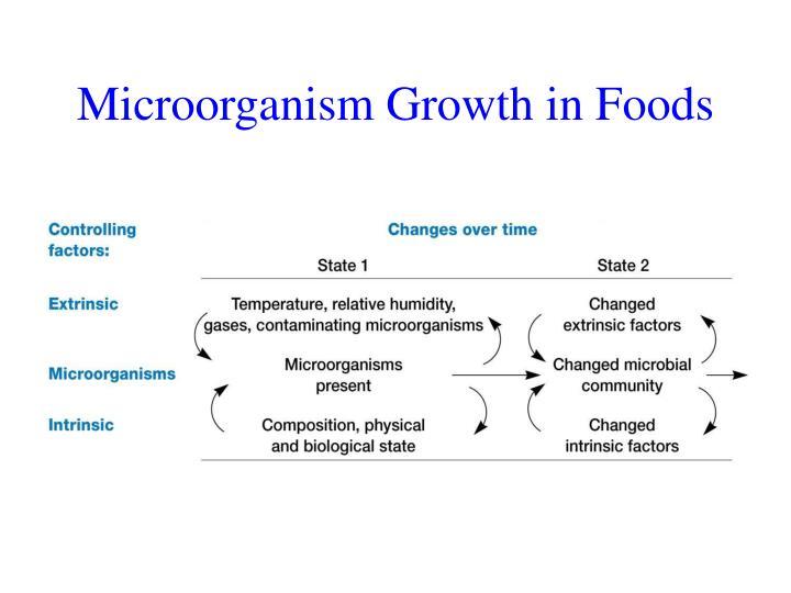 Microorganism Growth in Foods