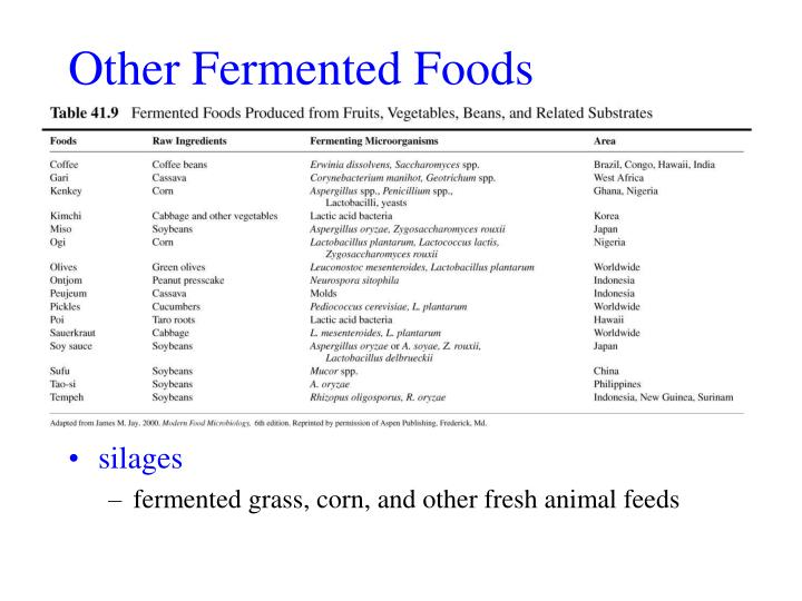 Other Fermented Foods
