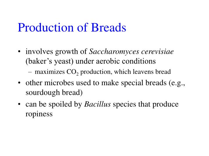 Production of Breads