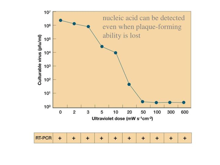 nucleic acid can be detected