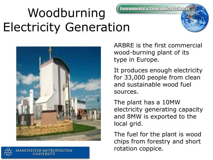 Woodburning Electricity Generation
