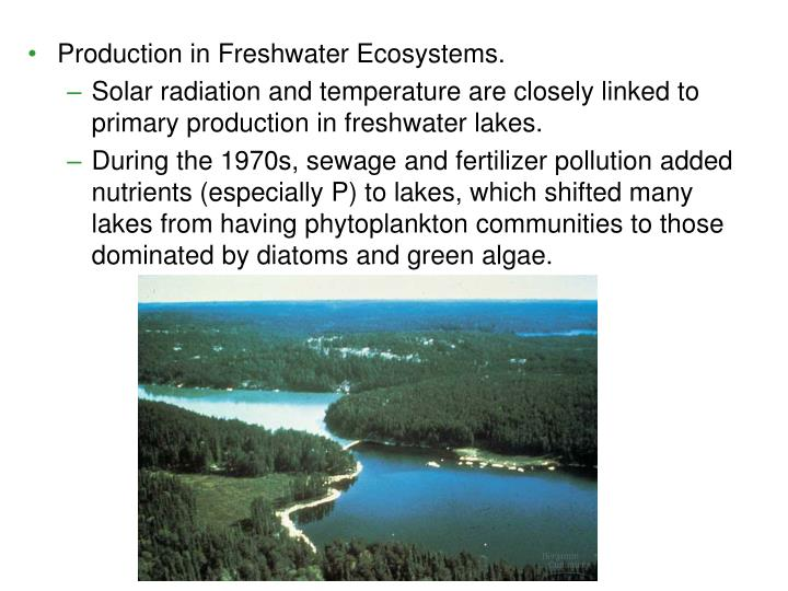 Production in Freshwater Ecosystems.