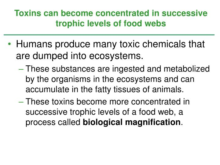 Toxins can become concentrated in successive trophic levels of food webs