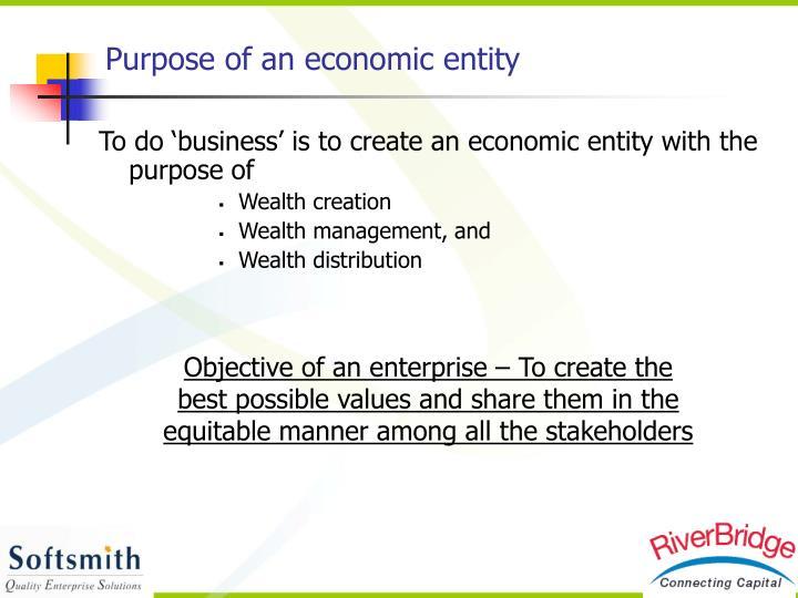 Purpose of an economic entity