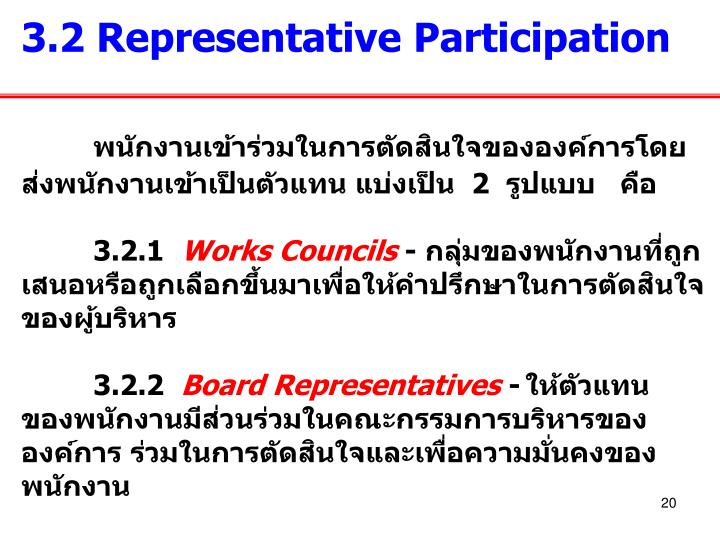 3.2 Representative Participation