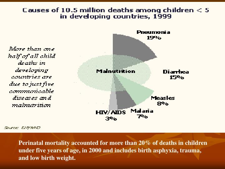 Perinatal mortality accounted for more than 20% of deaths in children