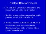 nuclear reactor process