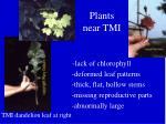 plants near tmi