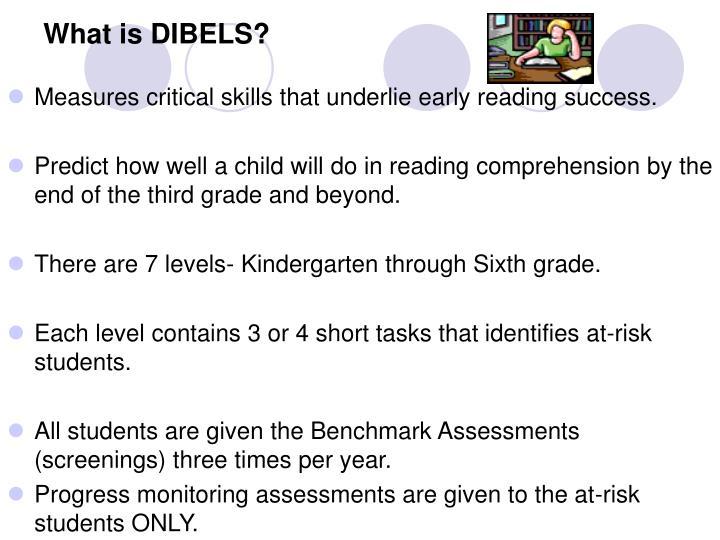 What is DIBELS?