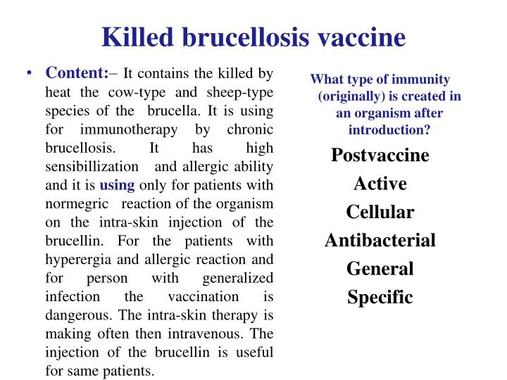 Killed brucellosis vaccine