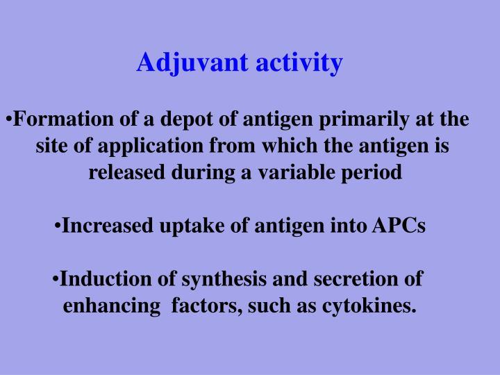 Adjuvant activity