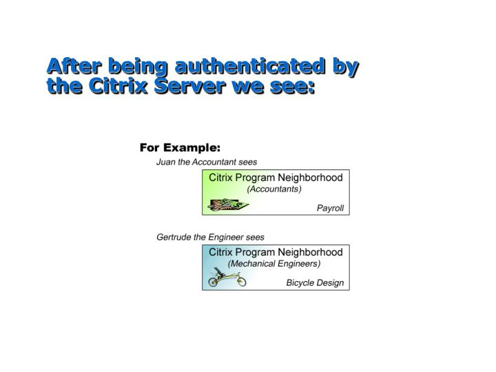 After being authenticated by the Citrix Server we see: