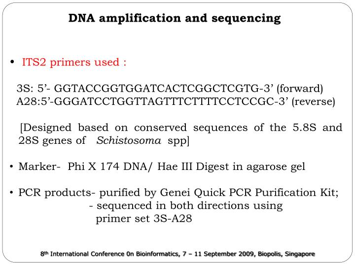 DNA amplification and sequencing