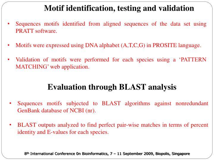 Motif identification, testing and validation