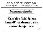 fisiolog a del ejercicio efectos agudos vs cr nicos del ejercicio