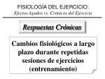 fisiolog a del ejercicio efectos agudos vs cr nicos del ejercicio1