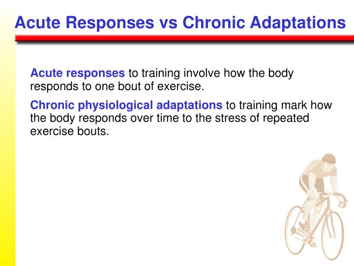Acute Responses vs Chronic Adaptations