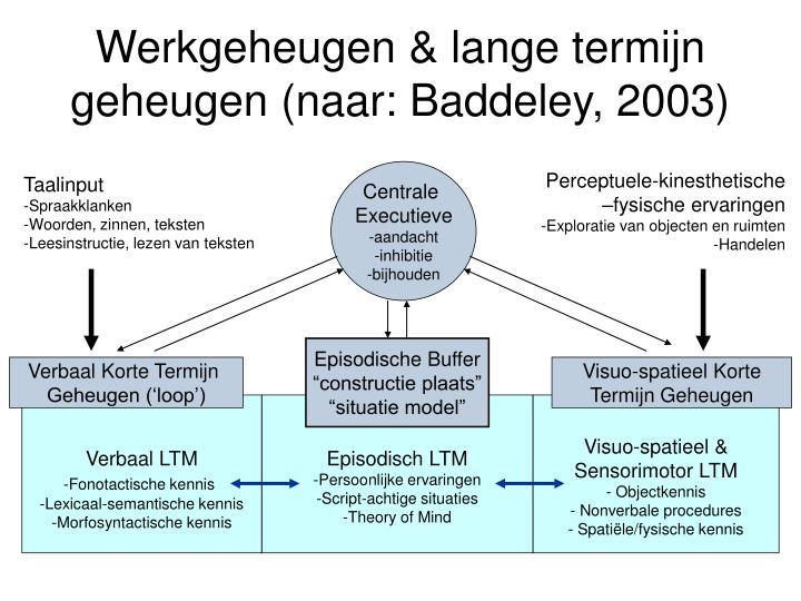 Werkgeheugen & lange termijn geheugen (naar: Baddeley, 2003)