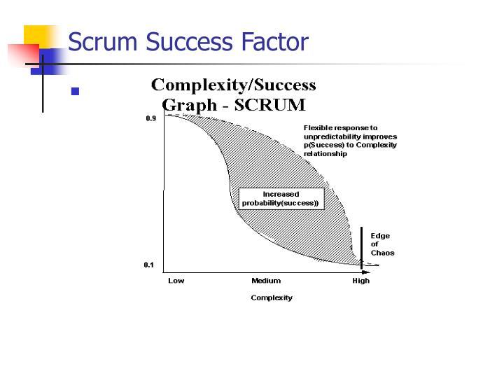 Scrum Success Factor