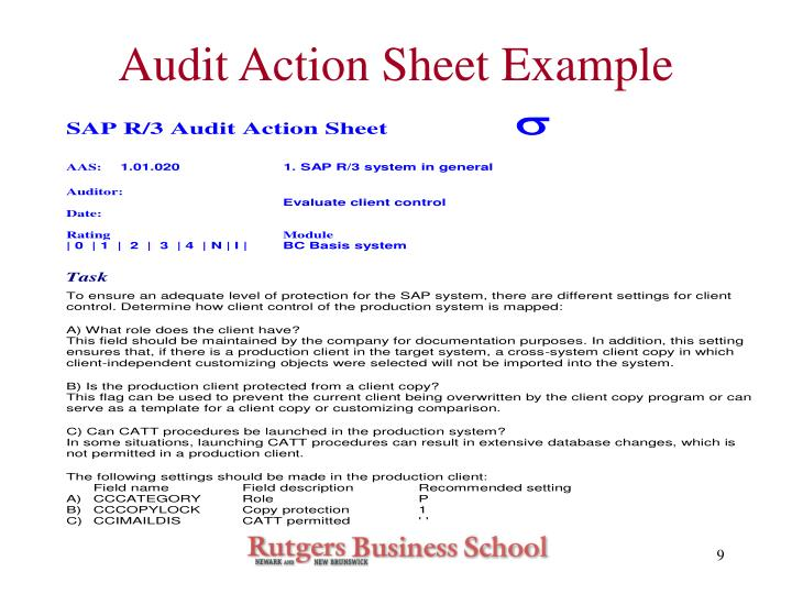 Audit Action Sheet Example