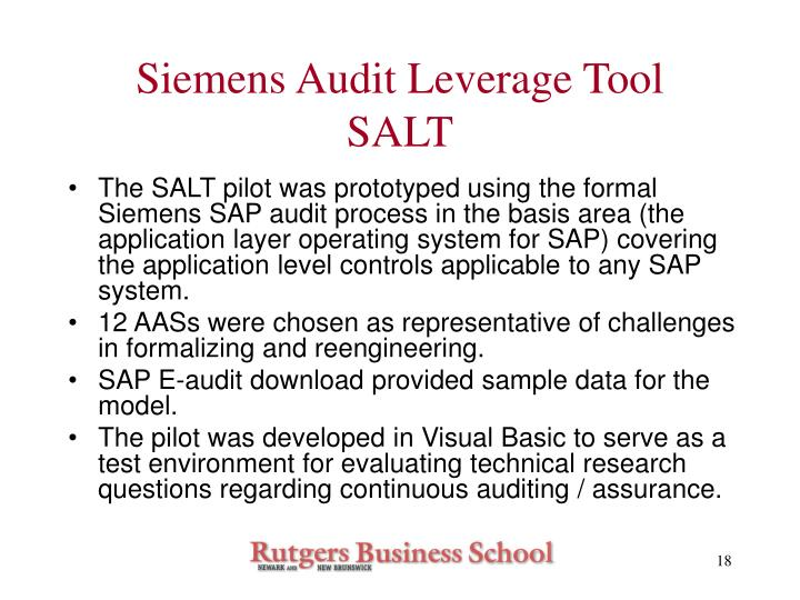 Siemens Audit Leverage Tool