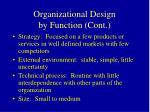organizational design by function cont