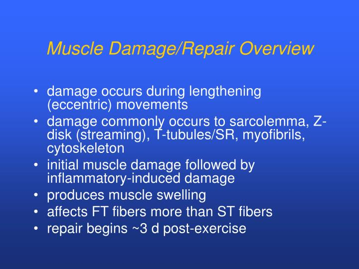Muscle Damage/Repair Overview