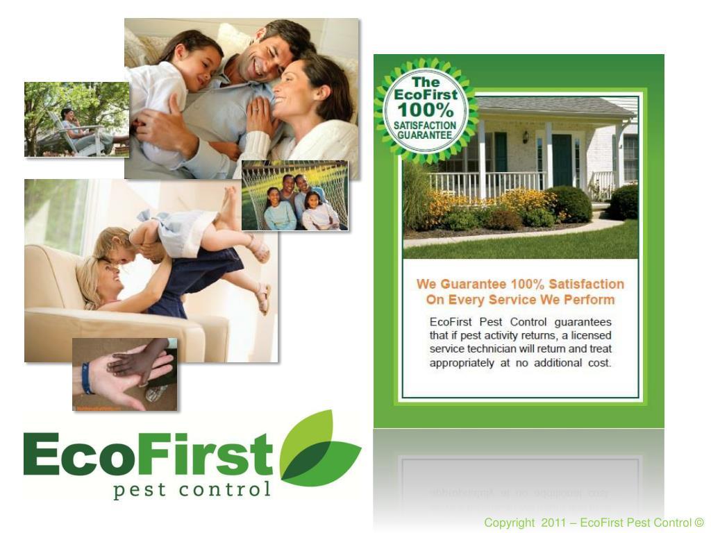 Copyright  2011 – EcoFirst Pest Control ©