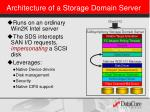architecture of a storage domain server