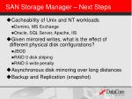san storage manager next steps