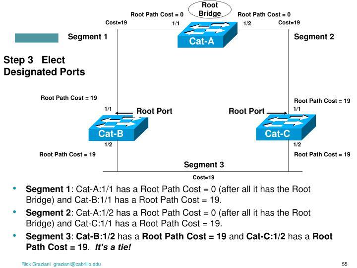 Step 3   Elect Designated Ports