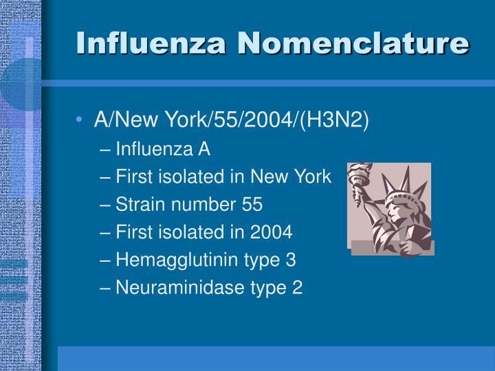Influenza Nomenclature